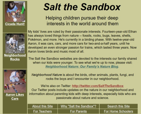 SalttheSandboxHomePage